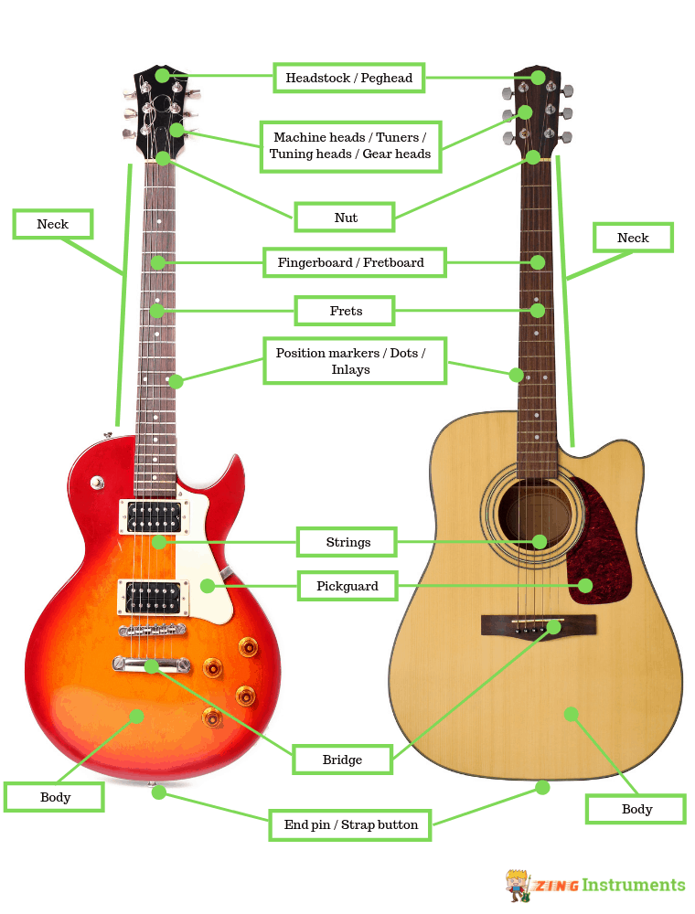 Guitar anatomy.