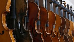 Many violins