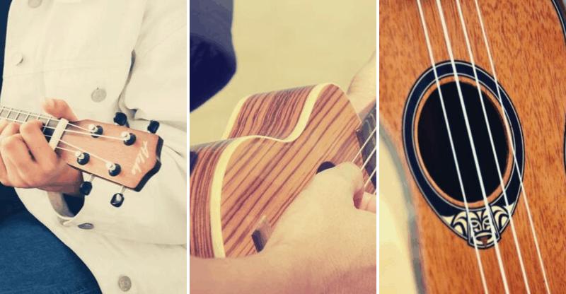 ukulele anatomy