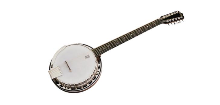 12 string banjo