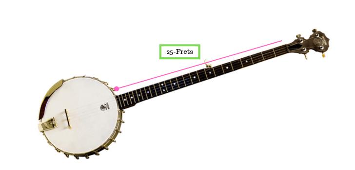 Long Neck Banjo