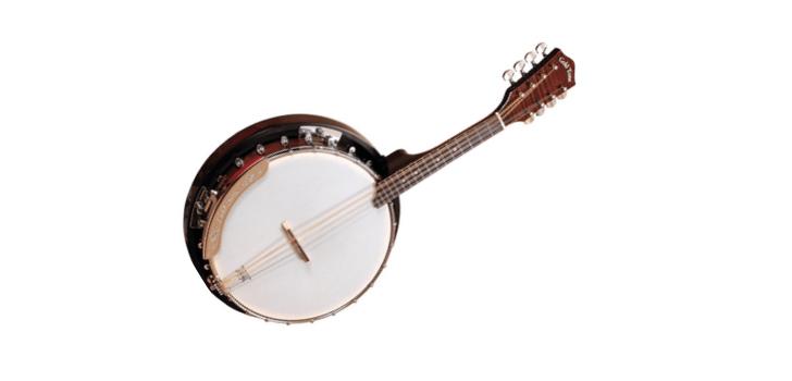 Mandolin Banjos or Banjolin