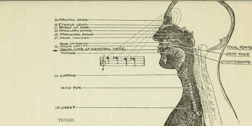 10 Practical Methods for Learning How to Sing in Head Voice