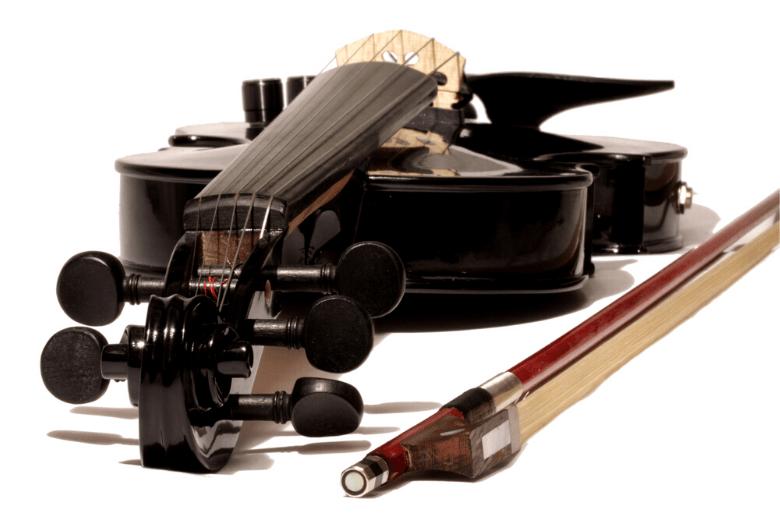 5 string black violin