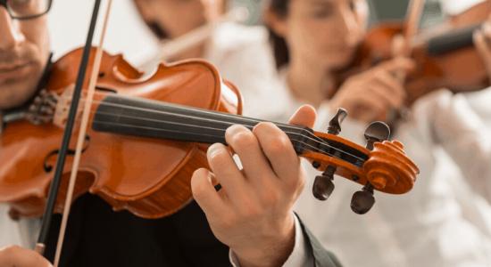 violins in concert