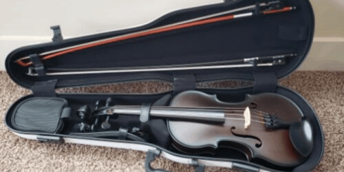 10 Best Violin Cases – Buyer's Guide, Advice and Reviews