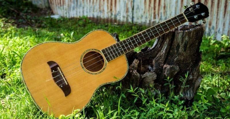 Baritone ukulele leaned against stump of tree