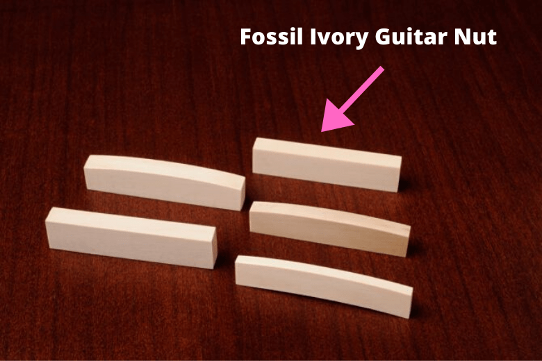Fossil Ivory Guitar Nut