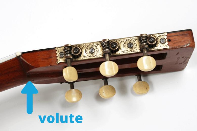 Volute on a Martin Guitar 1897