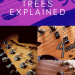 string trees explained