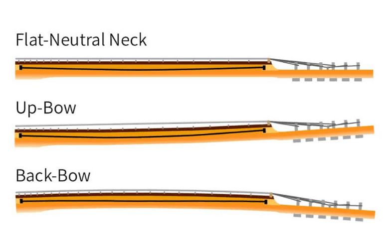 truss rod neck positions